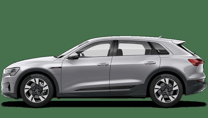 Floret Silver (Metallic) Audi e-tron