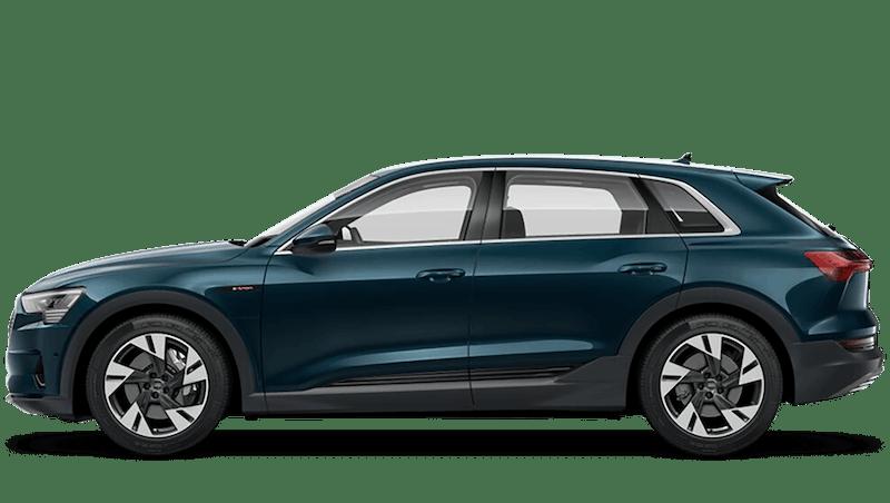 Audi e-tron Entry