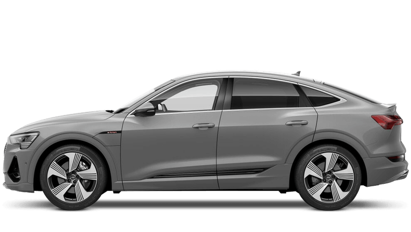 Siam Beige (Metallic) New Audi e-tron Sportback
