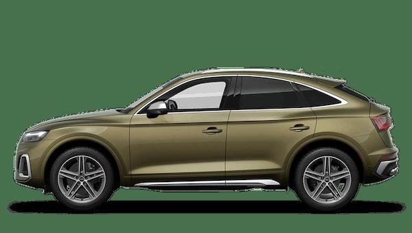 Audi SQ5 Sportback Entry