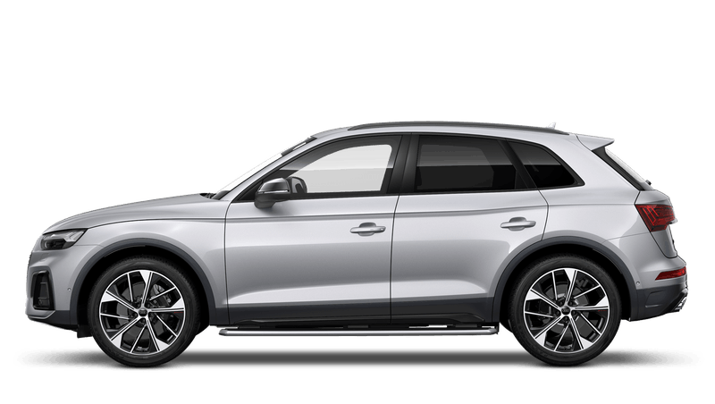 Floret Silver (Metallic) Audi SQ5