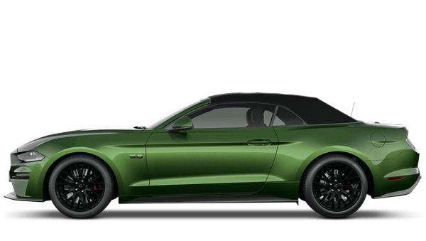 Ford Mustang Convertible GT