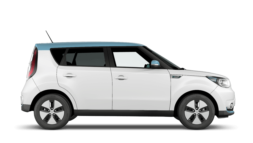 Snow White Pearl Electric Blue Roof (Premium)