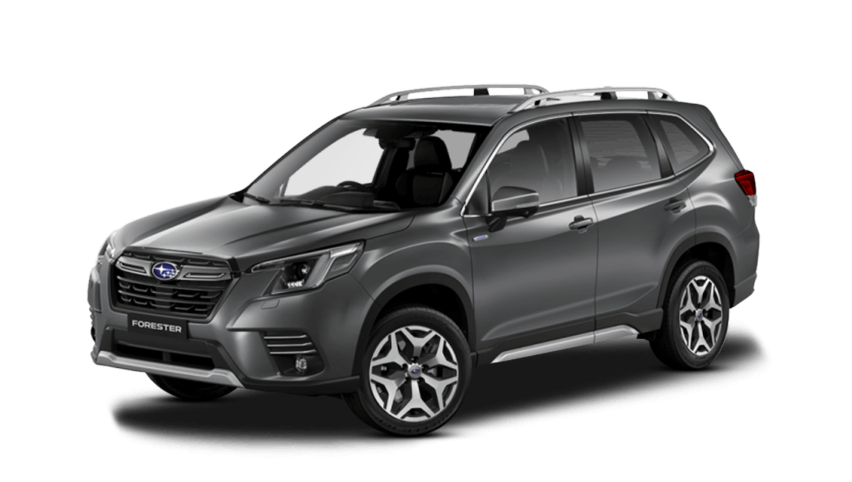 Magnetite Grey Metallic Subaru Forester E Boxer